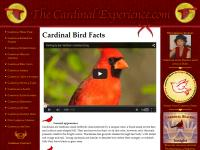 thecardinalexperience.com/bird facts.php